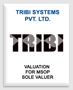 Tribi System Private Limited