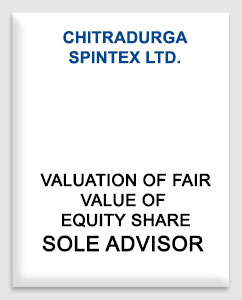Chitradurga Spintex Limited