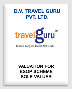 D.V Travel Guru Private Limited